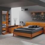 снимка на луксозна спалня