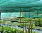 снимка на Мрежа за защита от градушка за големи земеделски площи